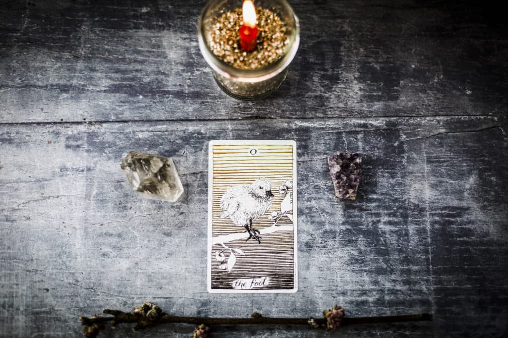 Learn Tarot The Fool Card The Witches Box
