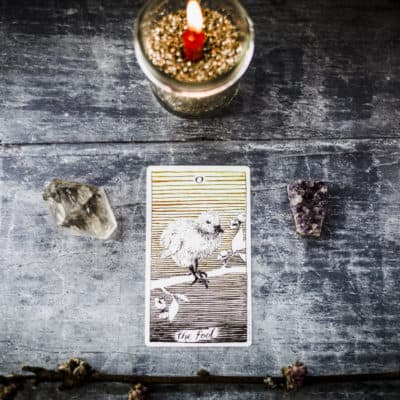 Learn Tarot: The Fool Card