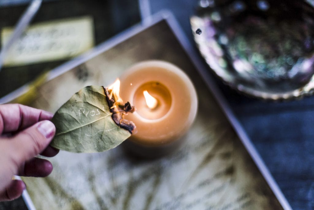 A Simple Bay Leaf Spell - The Witches Box