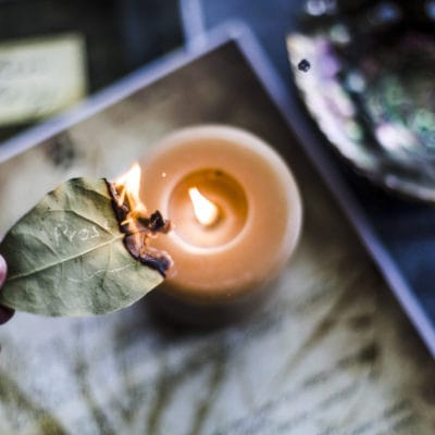 A Simple Bay Leaf Spell