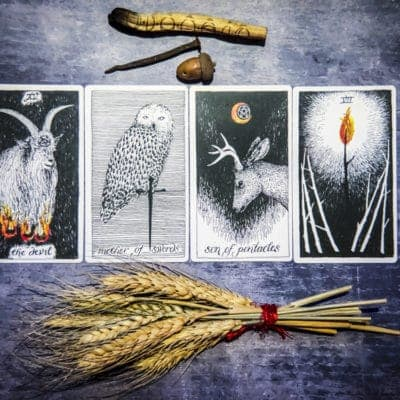 Inner Revealings Tarot:  September 29, 2019